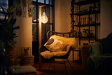 philips giant led lamp
