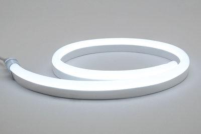 LED Neon 6000k