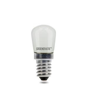 Koelkastlampje